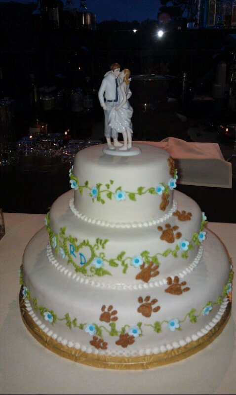 Graduation Cakes With Dog Paws